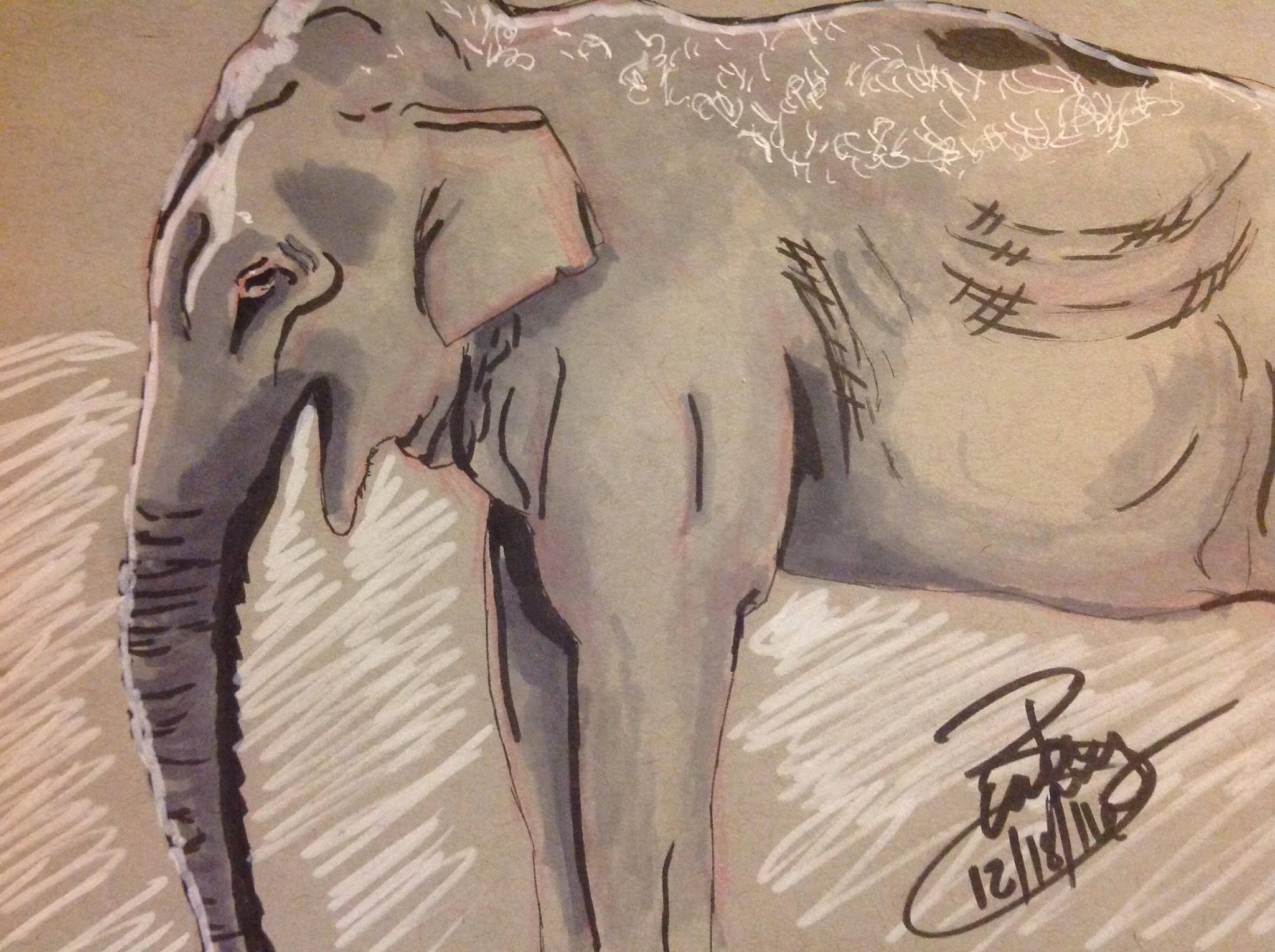 Elephant: Ink and Marker