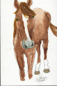 Horse: Watercolor